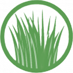 new grass icon